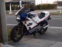 Shizoka19